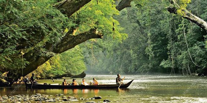 پارک جنگلی تامان نگارا